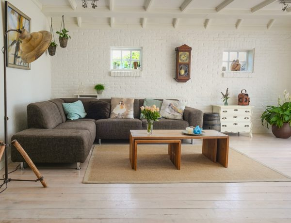7 qualities to look for when purchasing a new carpet